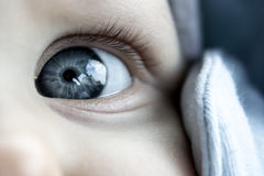 Baby Eye Detail Photo. Baby Face - Eye Detail Photo royalty free stock photography