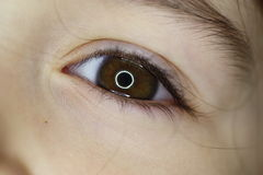 Baby Eye. A picture of a toddlers eyeball Royalty Free Stock Photo