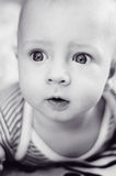 Baby with eyes wide opened Stock Image