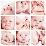 Baby face collage Royalty Free Stock Photos