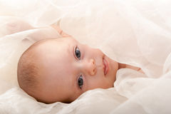 Baby face with soft cover. Beautiful baby face with soft cover Royalty Free Stock Photo