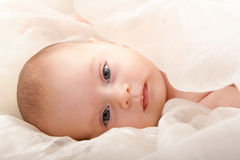 Baby face with soft cover. Beautiful baby boy's face with soft cover Royalty Free Stock Photo