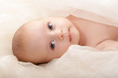 Baby face with soft cover Stock Photos