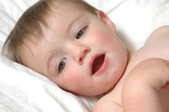 Baby faces Royalty Free Stock Image