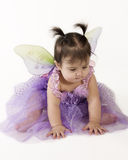 Baby fairy. Beautiful baby girl in princess fairy costume Stock Images