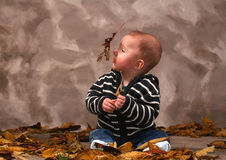Baby fall autumn Royalty Free Stock Photos
