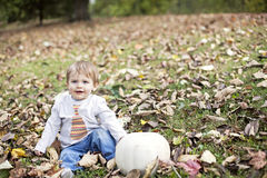 Baby fall portrait Stock Image