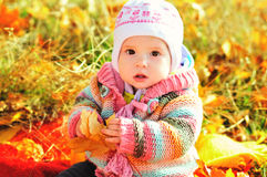 Baby in fall time Stock Photography