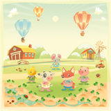 Baby Farm Animals In The Countryside. Royalty Free Stock Images