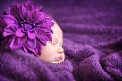 Baby fashion concept Stock Image