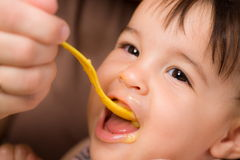 Baby feeding Royalty Free Stock Image