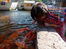 Baby feeding fish royalty free stock photo