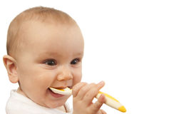 Baby feeding himself with spoon. Baby putting spoon in his mouth.  Isolated Stock Images