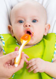 Baby feeding with a spoon Royalty Free Stock Image