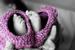 Baby Feet. Mother holding newborn baby feet Stock Photography