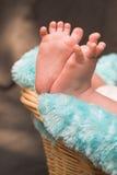 baby feet Zdjęcia Royalty Free