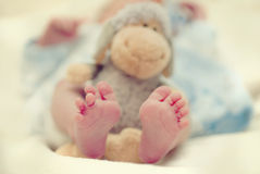 Baby feet. Beautyfull baby feet in closeup shot Stock Photo