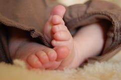 Baby feet. Close up of newborn baby's feet Stock Photo