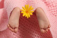 Baby feet Stock Photos