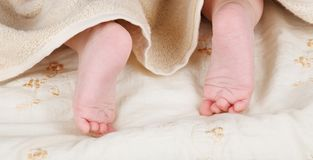 Baby feet Royalty Free Stock Image