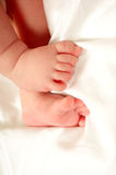 baby feet obraz royalty free