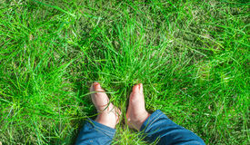Baby feet barefoot on green grass Stock Photo