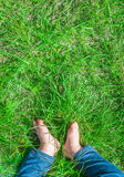Baby feet barefoot on green grass Royalty Free Stock Image