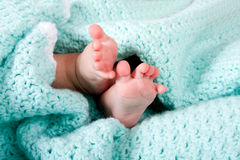 Baby feet in blanket Royalty Free Stock Image