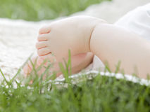 Baby feet. Close-up of baby feet Stock Images