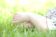 Baby feet. Close-up of baby feet outdoor Stock Photography
