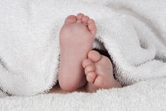 Baby feet covered in a white towel Stock Photos
