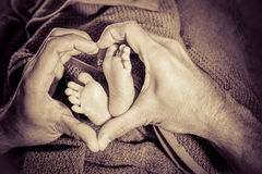 Baby feet in father hands Royalty Free Stock Image