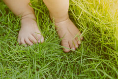 Baby feet  ( Filtered image processed vintage effect. ) Stock Photos