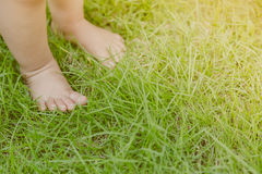 Baby feet  ( Filtered image processed vintage effect. ) Royalty Free Stock Photos