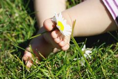 Baby feet with flower Royalty Free Stock Photos