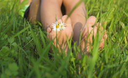 Baby feet on the grass. Royalty Free Stock Photos