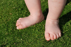 Baby feet on grass outdoors Stock Image