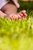 Baby feet in the green grass at summer warm day in the city park. Stock Photos