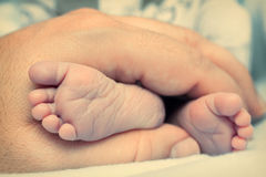 Baby feet in hands Royalty Free Stock Photo