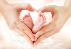 Baby feet in mother hands. Hearth shape royalty free stock photo