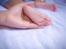Baby feet in mother hands. Mother is love for Baby concept Stock Photo