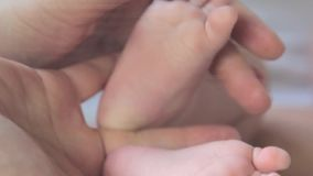 Baby Feet In Mother Hands. Newborn Baby`s Feet On Female Hands Closeup stock footage
