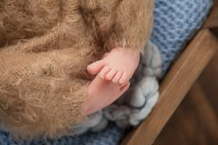 Baby feet of a newborn baby in brown pants on a blue rug stock images