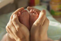 Baby feet in parent hands.  Stock Photos