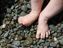 Baby feet standing on wet pebble Royalty Free Stock Photos