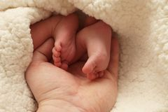 Baby Feet Stock Photo