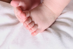 Baby Feet and Toes Stock Image