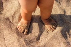 Baby feet walking on sand beach in the summer. stock images