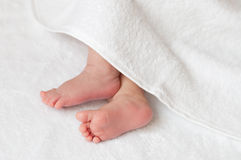 Baby feet in a white towel Royalty Free Stock Image