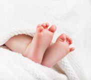 Baby feet. Wrapped in a white towel royalty free stock photo